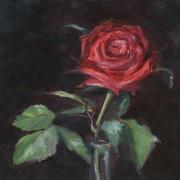 Valentine-Rose
