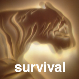 This image has an empty alt attribute; its file name is survival-1.jpg