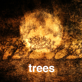 This image has an empty alt attribute; its file name is trees.jpg